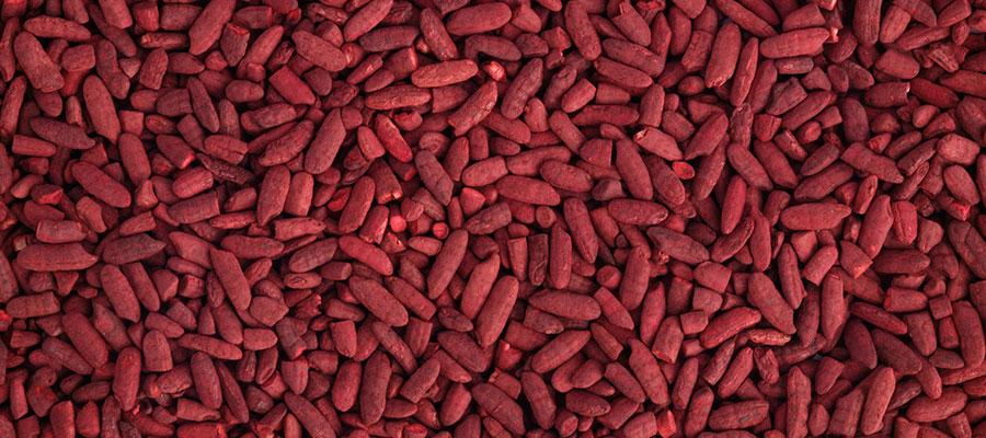 Levure de riz rouge